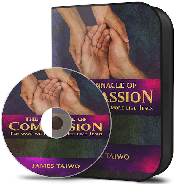 pinnacle of compassion audiobook