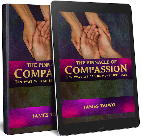 pinnacle of compassion audiobook2